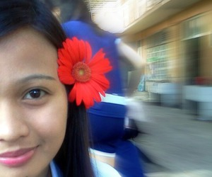 flower, simple, and school image