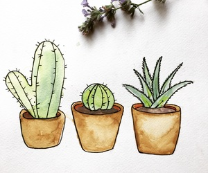art, cacti, and cactus image
