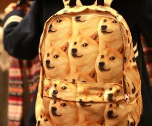 backpack, doge, and shibainu image