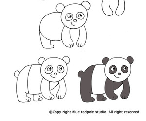 draw, panda, and how image