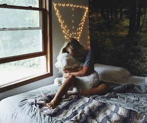 bedroom, dog, and home image