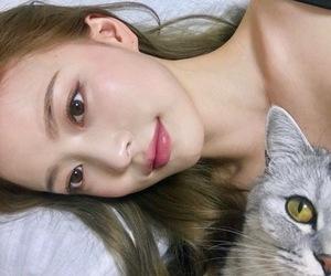 cat, ulzzang, and korean image