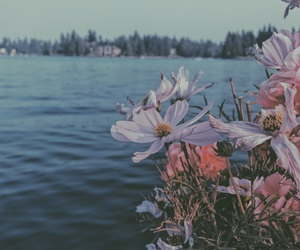 floral, flowers, and grunge image