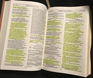 book, pages, and plays image