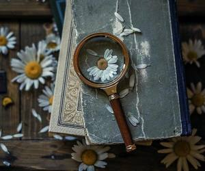 beautiful, book, and flowers image