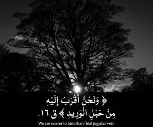 arabic, design, and english image