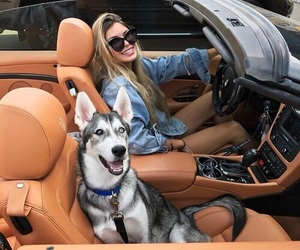car, pets, and royce image