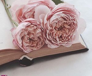 book, flowers, and girly image