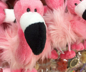 flamingo, pink, and plushie image