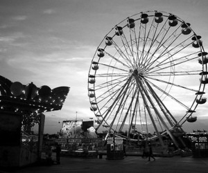 photography, black and white, and love image