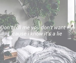 Lyrics, it's a lie, and the vamps image