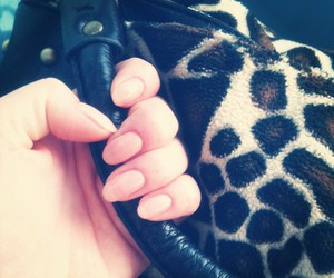 fashion, natural nails, and leopard image