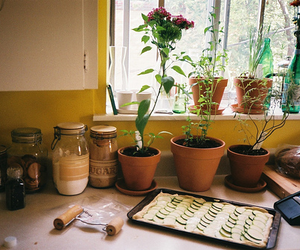 kitchen, plants, and vintage image