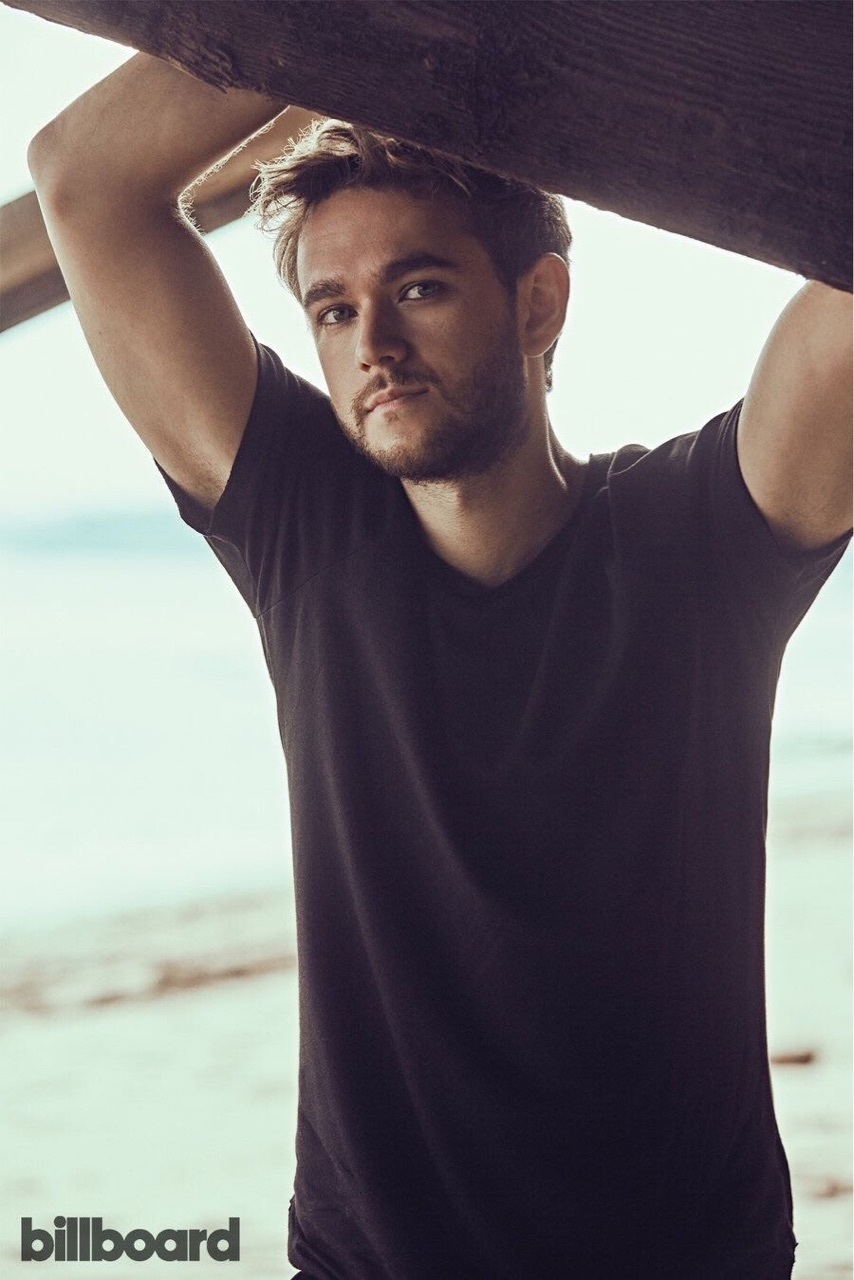 Hot and zedd image