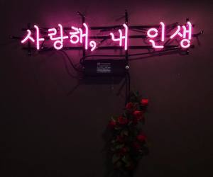 neon, pink, and korean image