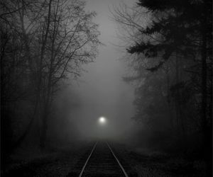 black and white, mist, and night image