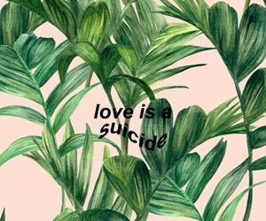 wallpaper, plants, and tumblr image