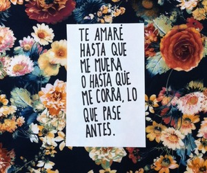 flowers, frases, and love image