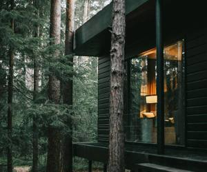 house, nature, and wood image