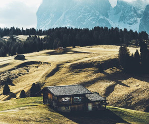 mountains, nature, and wood image