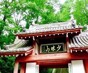 縁起だるま, 禅, and 少林山達磨寺 image