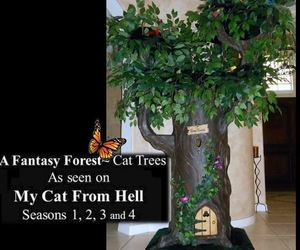cats, fantasy, and seen on my cat from hell image