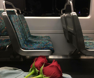 roses, aesthetic, and alternative image