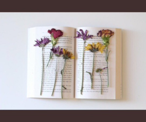 flowers, tumblr, and books image