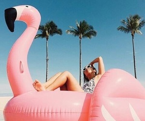 summer, flamingo, and girl image