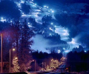 lights, winter, and nature image