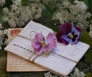 letters and orchid image