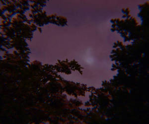 purple, sky, and theme image