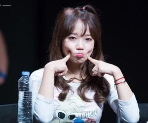 korean, kpop, and ioi image
