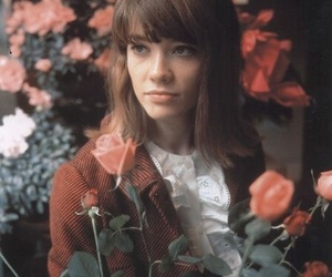 flowers, francoise hardy, and rose image