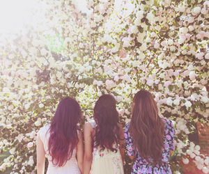 flowers, girls, and hair image