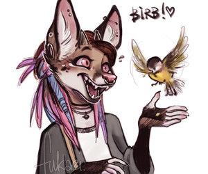 art, birb, and fukari image