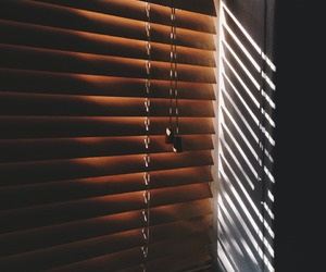 blinds and brown image