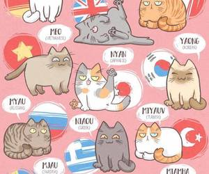 languages, meow, and cat day image