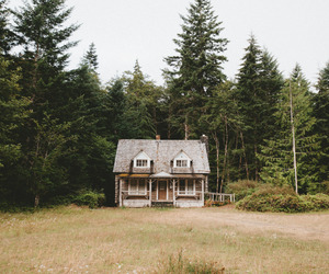 cabin, nature, and peace image