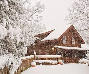 beautiful, cabin, and cold image