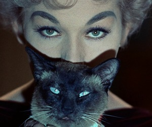 cat, Kim Novak, and eyes image