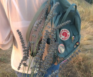 aesthetic, flowers, and kanken image