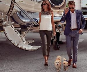 luxury, couple, and dogs image