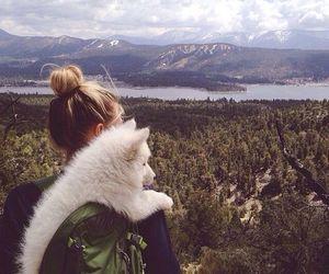 dog, girl, and nature image