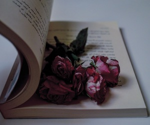 book, flower, and flowers image