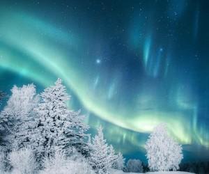 snow, winter, and aurora image