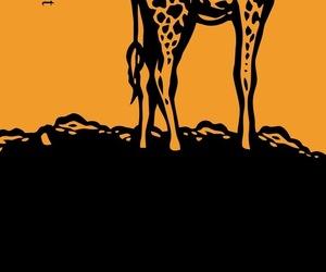 girafa, yellow, and giraffe image