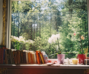 books, window, and flowers image