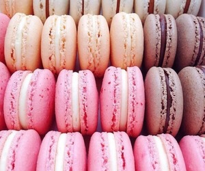 desserts, macaroons, and pink image