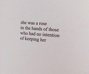 quotes, rose, and words image